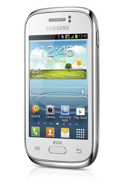 Samsung Galaxy Young GT-S6310N Test - 0